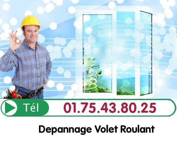 Rideau Metallique Mondreville 78980